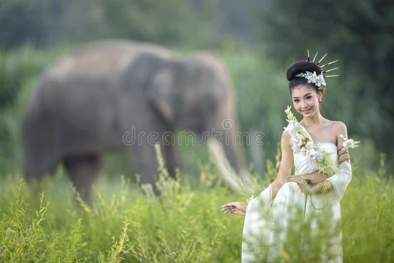 Härliga kvinnor som bär byn för vit elefant, Surin, Thailand royaltyfri foto