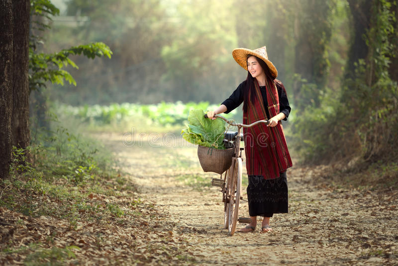 Härliga laotiska kvinnor som rider cyklar Laotisk traditionell härlig w fotografering för bildbyråer