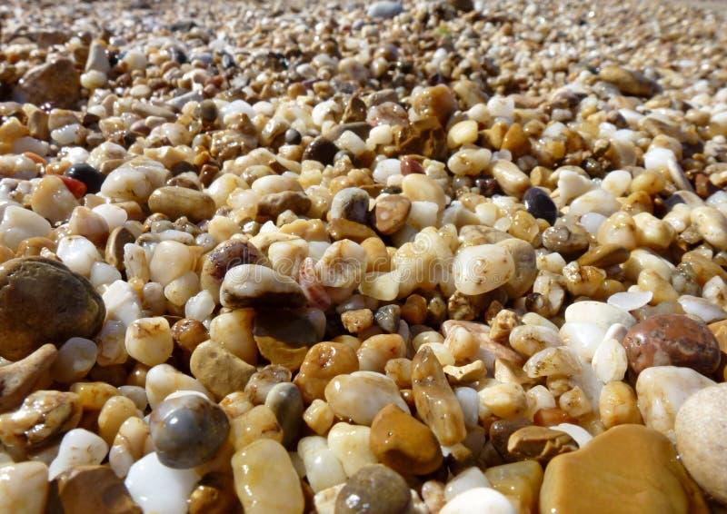 Härliga mång--färgade våta stenar och sand på stranden arkivbild