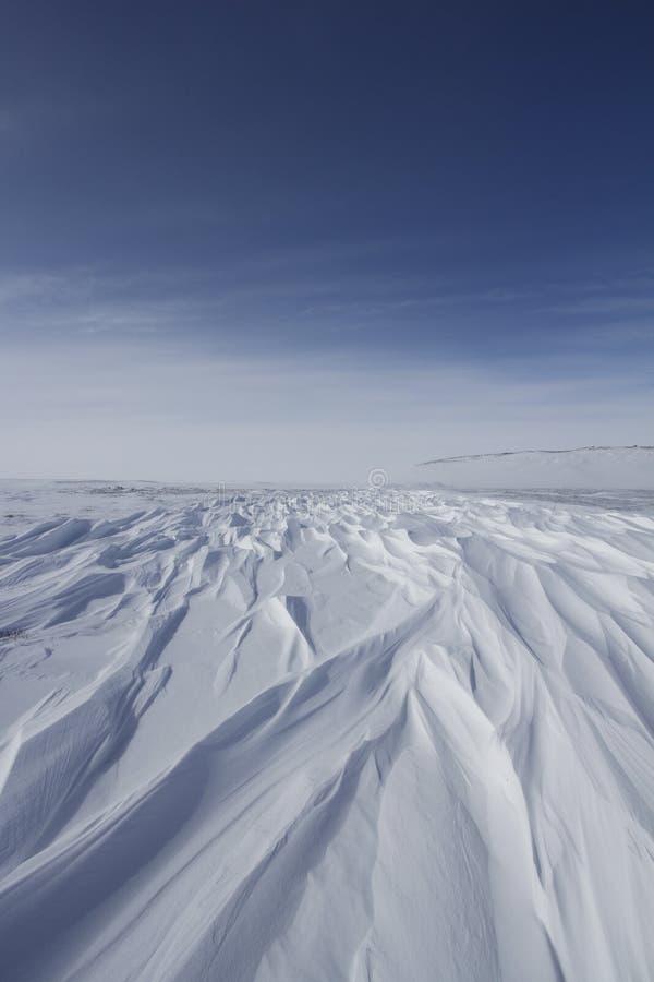 Härliga modeller av sastrugien, parallella wavelike kanter som orsakas av vindar på yttersida av hård snö royaltyfri foto