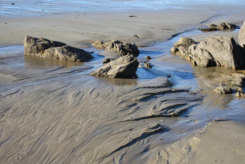Härliga modeller och spårar lämnat av tidvattnet på sanden royaltyfri bild