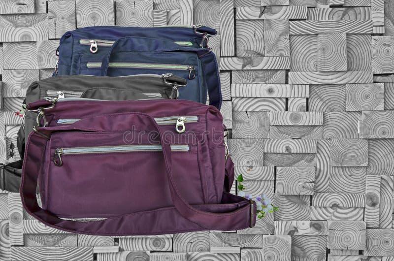 Härliga moderna ryggsäckar på trämodellbakgrund royaltyfria foton