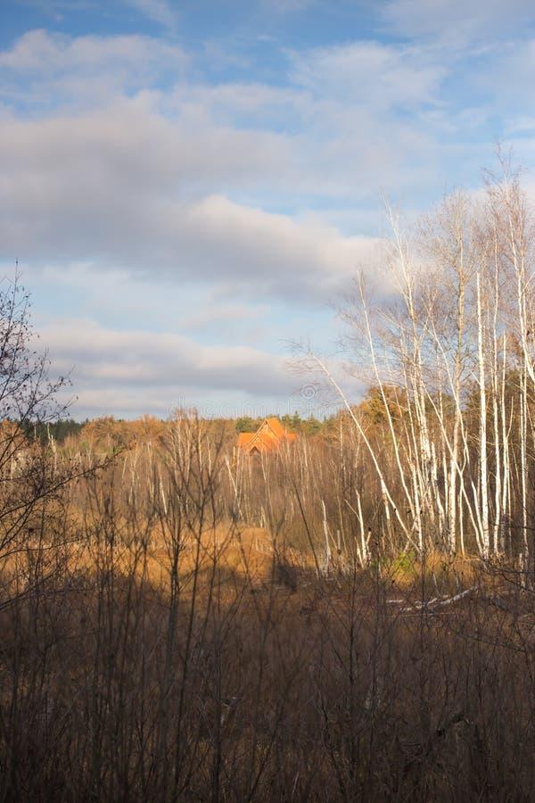 Härliga moln över höstskogen royaltyfri bild