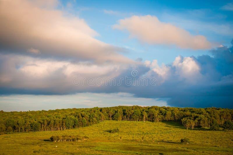 Härliga moln över stora ängar, i den Shenandoah nationalparken, fotografering för bildbyråer