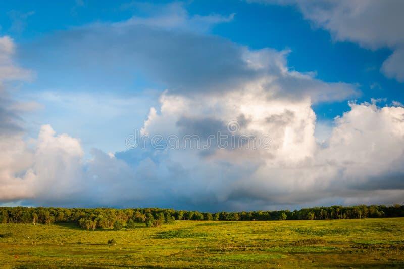 Härliga moln över stora ängar, i den Shenandoah nationalparken, royaltyfria bilder