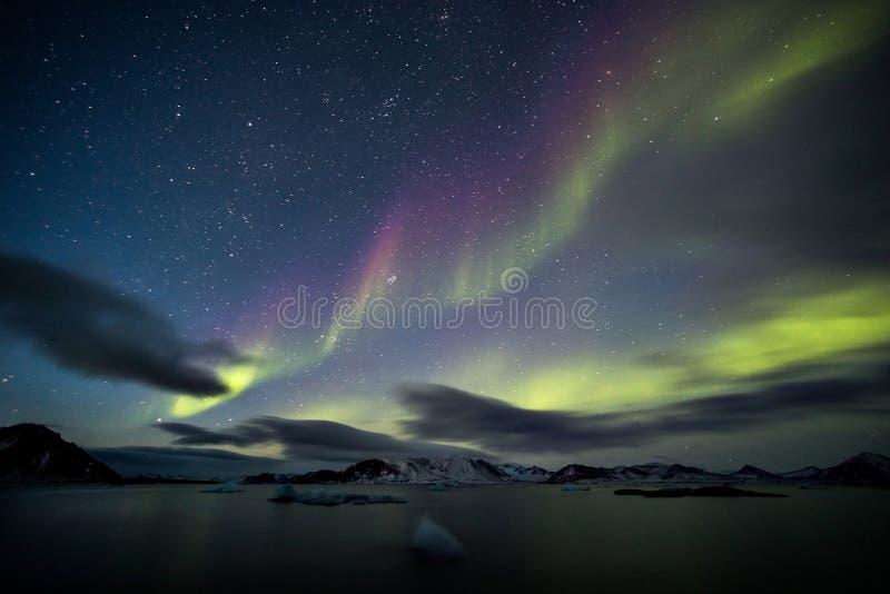 Härliga nordliga ljus - arktiskt landskap royaltyfria bilder
