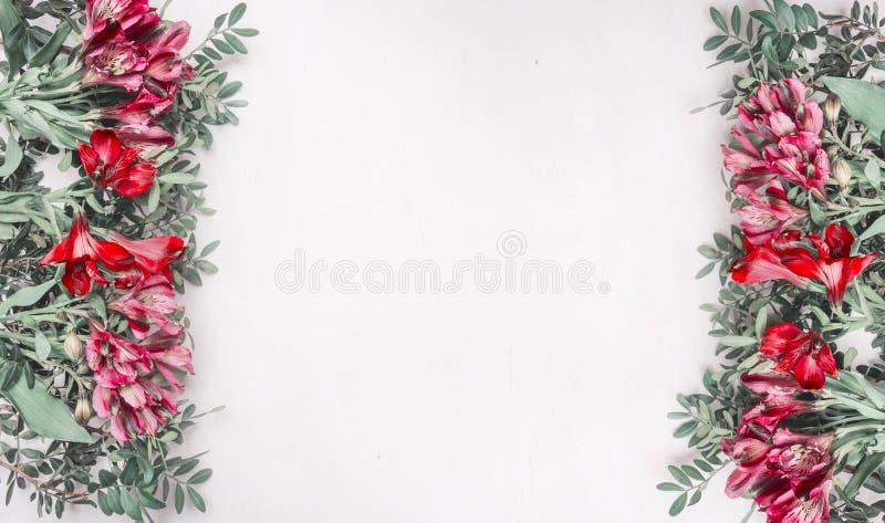Härliga nya buskerosor fodrade med ramen på en vit lantlig träbakgrund, utrymme för text, bästa sikt fotografering för bildbyråer