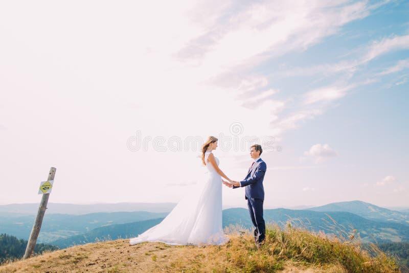 Härliga nygifta personer som lovingly överst rymmer deras händer av kullen med skogberg som bakgrund arkivfoto