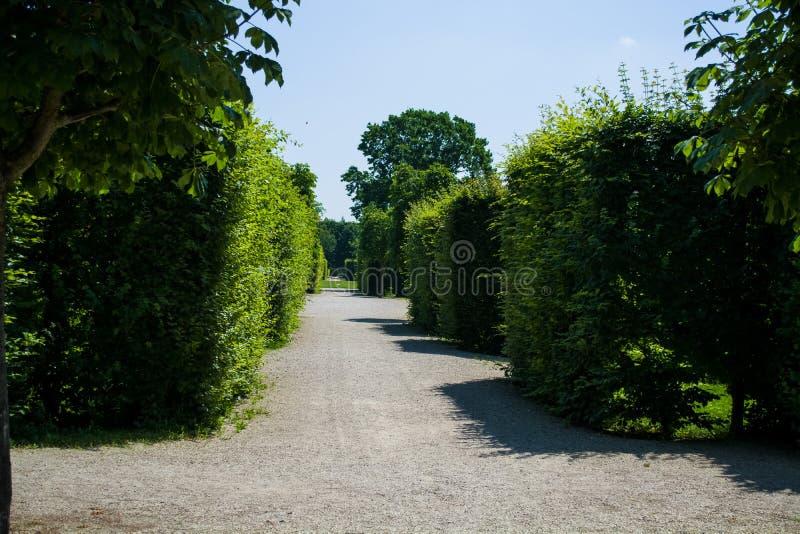 Härliga och breda vandringsled bland gräsplaner och en dekor i parkerar i sommaren Tr?dg?rd tr? royaltyfria foton