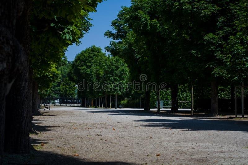 Härliga och breda vandringsled bland gräsplaner och en dekor i parkerar i sommaren Tr?dg?rd tr? arkivfoton