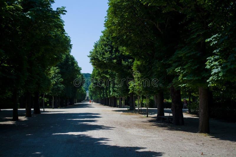 Härliga och breda vandringsled bland gräsplaner och en dekor i parkerar i sommaren Tr?dg?rd tr? royaltyfri bild