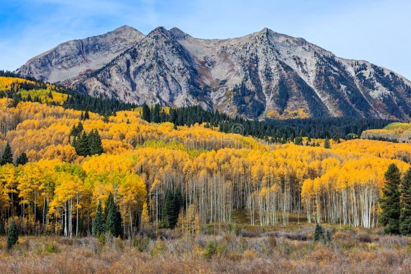 Härliga och färgrika Colorado Rocky Mountain Autumn Scenery arkivfoto
