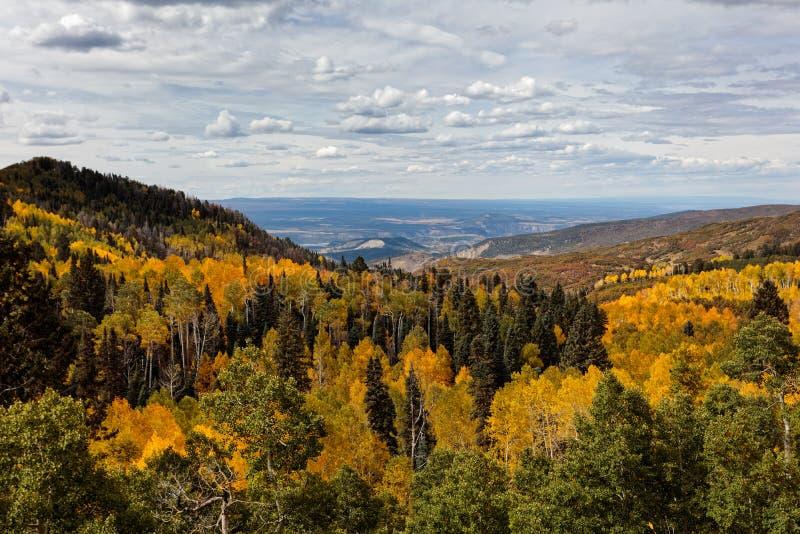 Härliga och färgrika Colorado Rocky Mountain Autumn Scenery royaltyfri bild