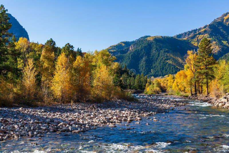 Härliga och färgrika Colorado Rocky Mountain Autumn Scenery Crystal River fotografering för bildbyråer