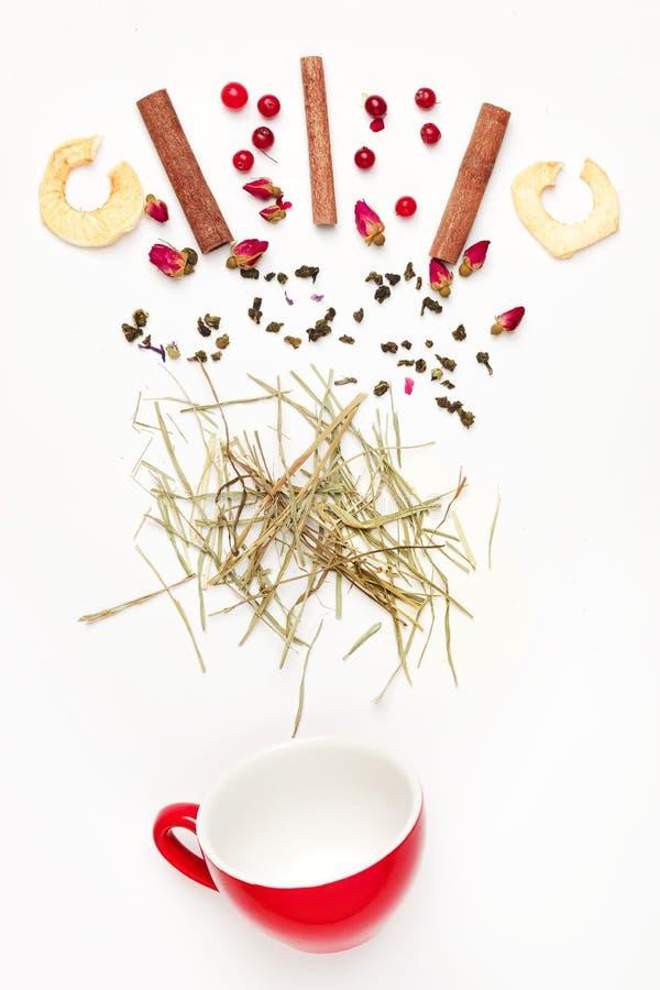 Härliga och läckra torkade teblad med örter, blommor, bär, frukter royaltyfria bilder