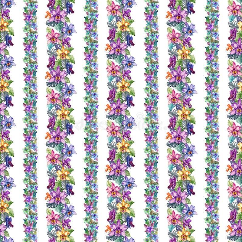Härliga orkidéblommor och monsterasidor i smala raka linjer på vit bakgrund Sömlös tropisk blom- modell royaltyfri illustrationer
