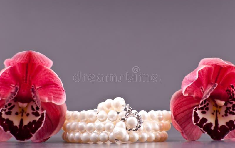 härliga pärlor royaltyfri foto