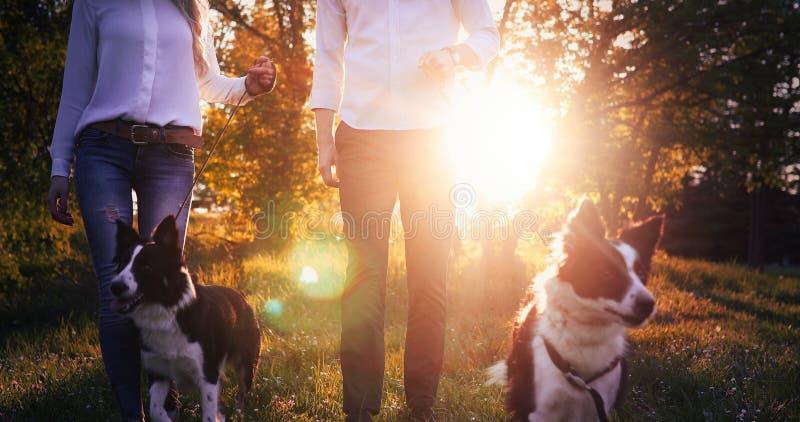 Härliga par som går hundkapplöpning och förbinder i natur arkivfoton