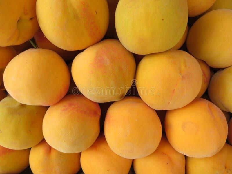 Härliga persikor av trevlig färg och läcker anstrykning royaltyfri foto