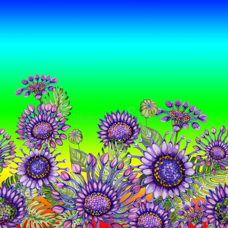 Härliga purpurfärgade afrikanska daizy blommor med exotiska sidor på färgrik lutningregnbågebakgrund seamless blom- modell vektor illustrationer