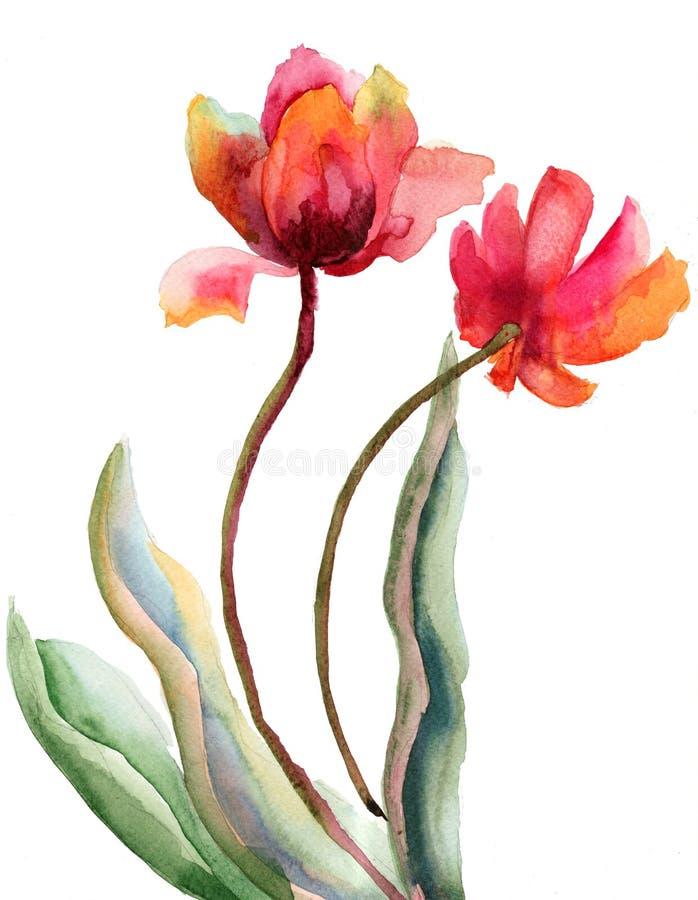 Härliga Röda Blommor Royaltyfria Bilder
