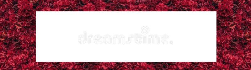 härliga röda ro Blommavägg Närbild av enorma röda rosor placera text stock illustrationer