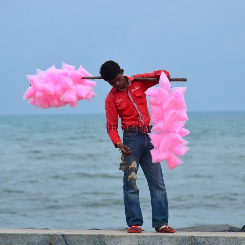 Härliga rosa färger royaltyfria bilder