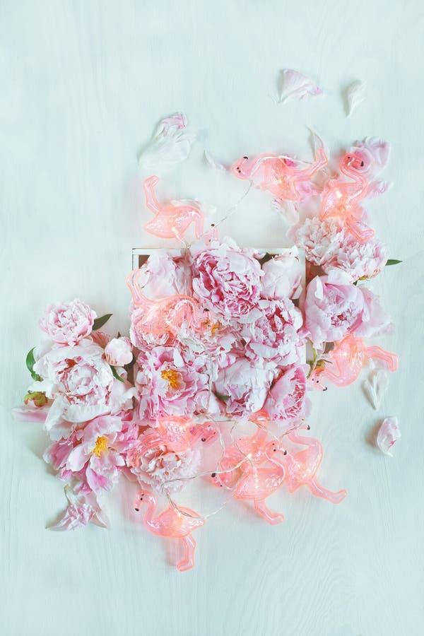 Härliga rosa färger, rosa pioner dekorerade på den vita wood tabellen med den roliga flamingokedjan av ljus arkivbild