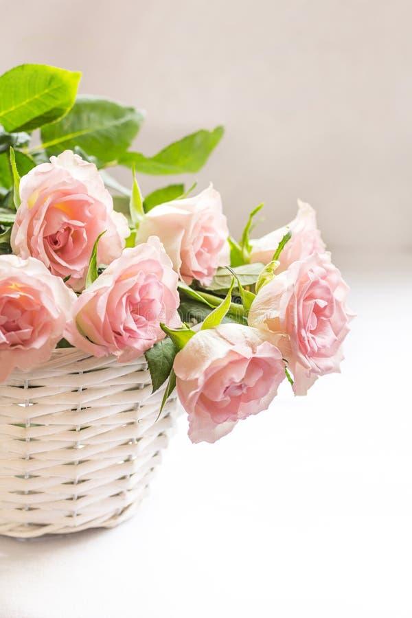 Härliga rosa rosor i ett vitt korgslut upp royaltyfria foton