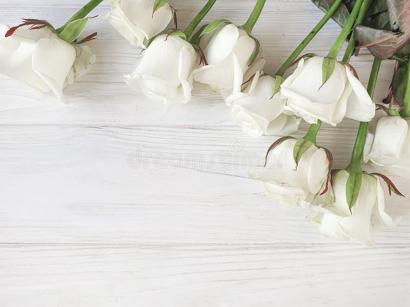 Härliga rosor blomstrar den romantiska gränsen på den vita träbakgrundsramen royaltyfri bild