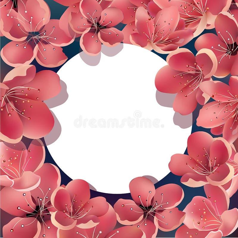 Härliga Sakura Floral Template med vitrundaramen För hälsningkort inbjudningar, meddelanden stock illustrationer