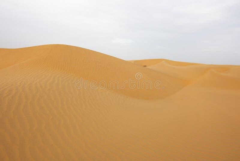 Härliga sanddyn i Rajasthan, Indien arkivfoton