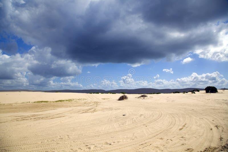 Härliga sanddyner, Australien. royaltyfria bilder