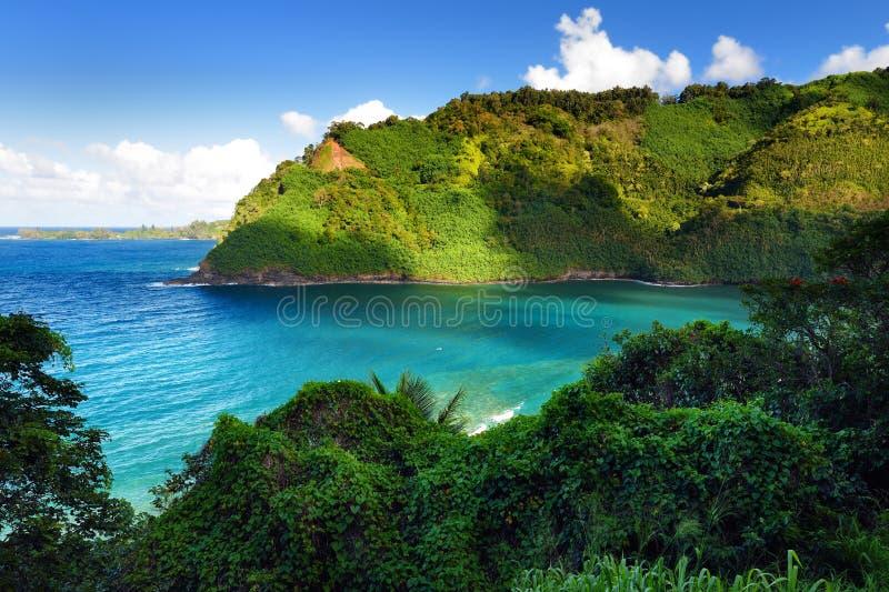 Härliga sikter av den Maui norrkusten som tas från den berömda slingriga vägen till Hana arkivbild