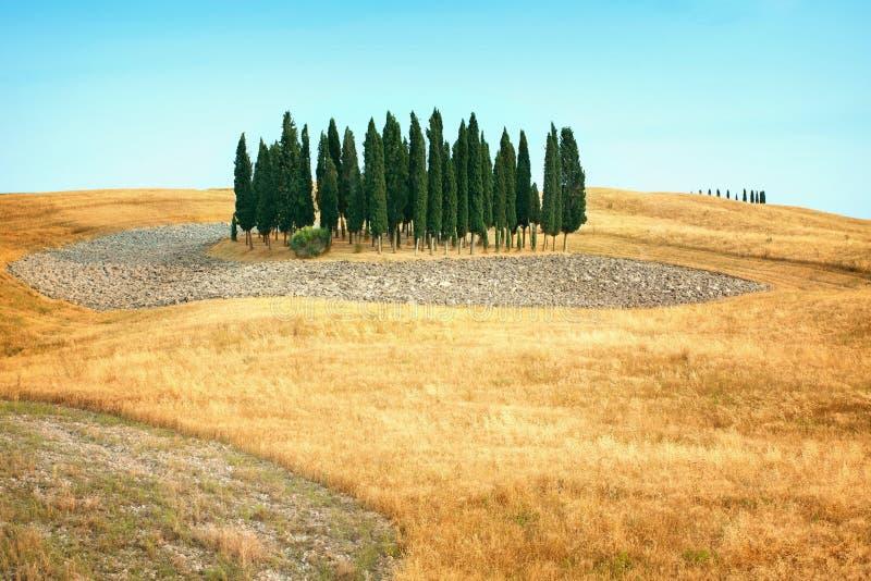 Härliga sikter av sommarlandskapet i Tuscany royaltyfri fotografi