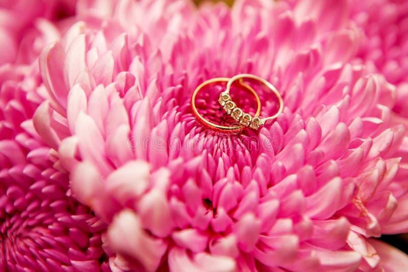Härliga skinande vigselringar med diamanter på de rosa blommorna arkivfoton
