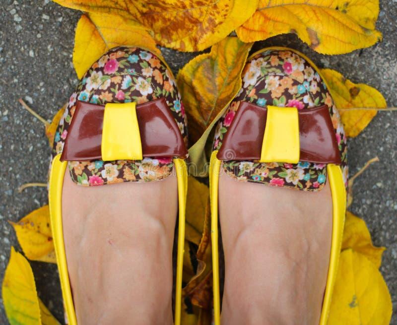 Härliga skor arkivbild