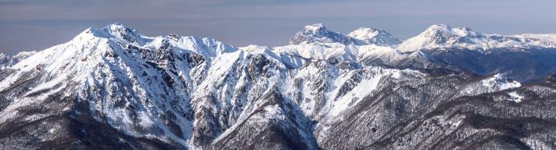 Härliga snöig Kaukasus bergmaxima Panorama- landskap för scenisk vinter i Krasnaya Polyana, Sochi, Ryssland royaltyfri fotografi