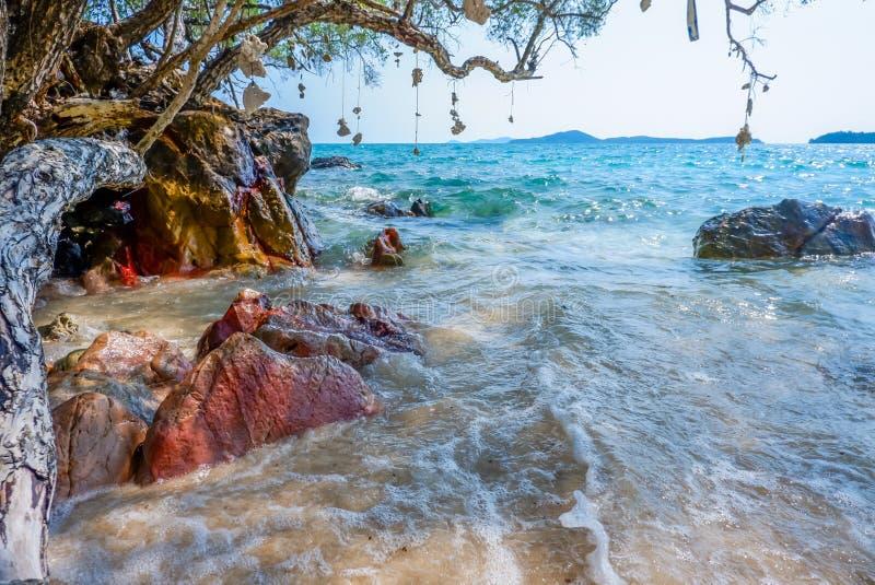 Härliga sommarhavssikter med vaggar, träd och garneringar som göras av korall arkivbild