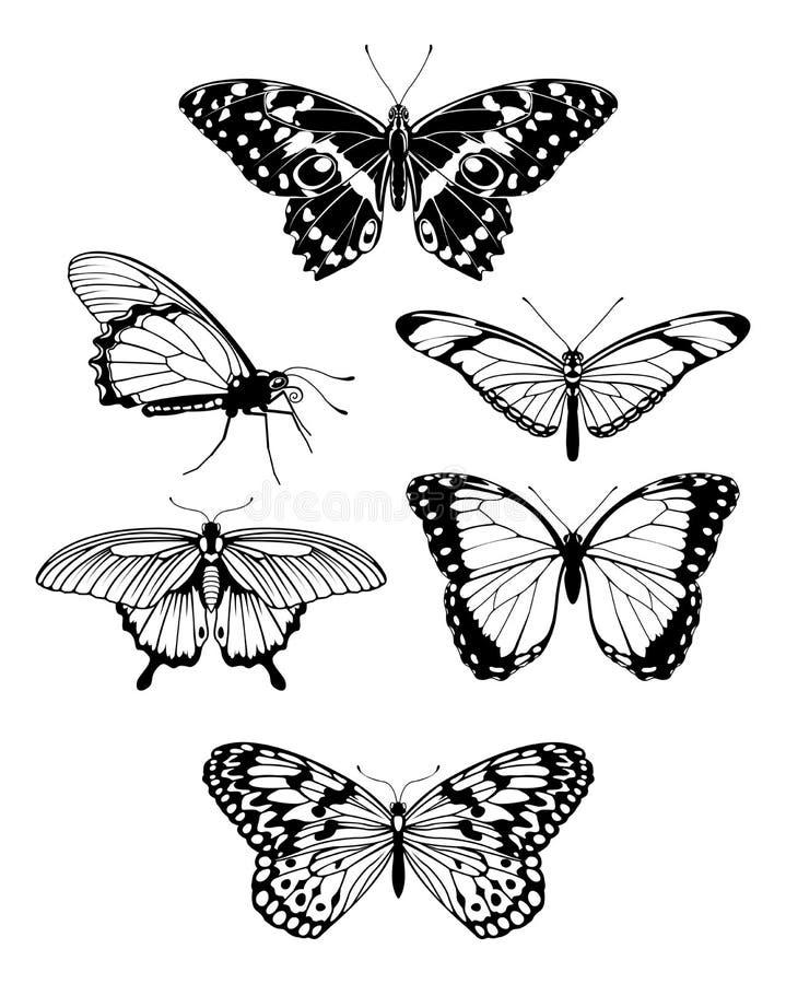 härliga stylised fjärilsöversiktssilhouettes stock illustrationer
