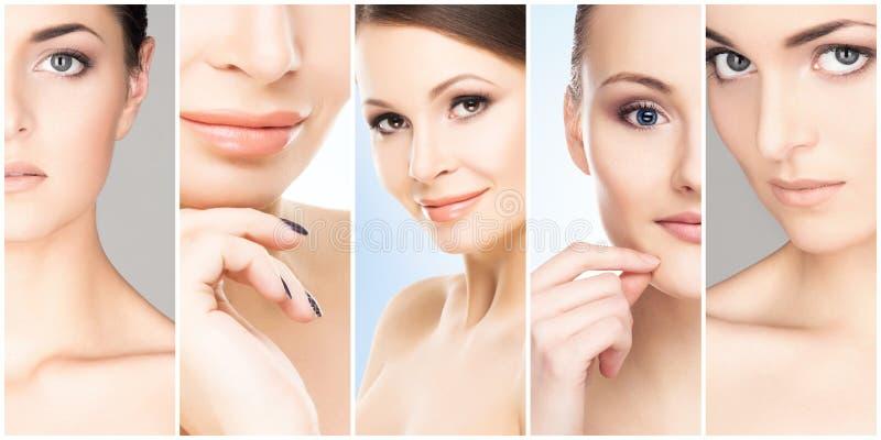 Härliga, sunda och unga kvinnliga stående Collage av olika kvinnaframsidor Lyfta för framsida, skincare, plastikkirurgi arkivfoto