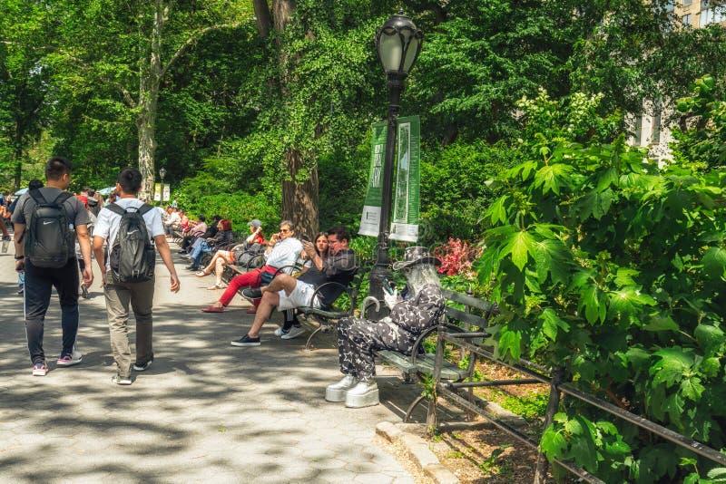 Härliga Sunny Day i den New York City Central Park royaltyfri fotografi