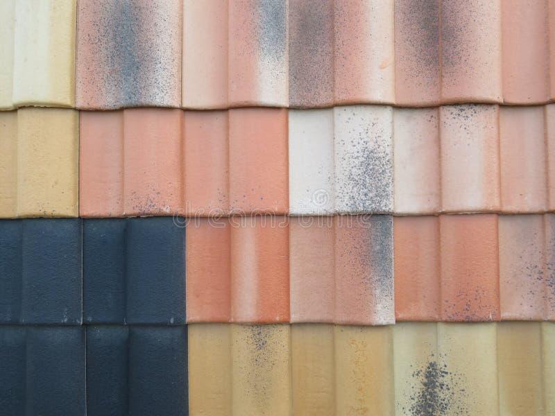Härliga texas som skyddar hemmet av regnet arkivfoton