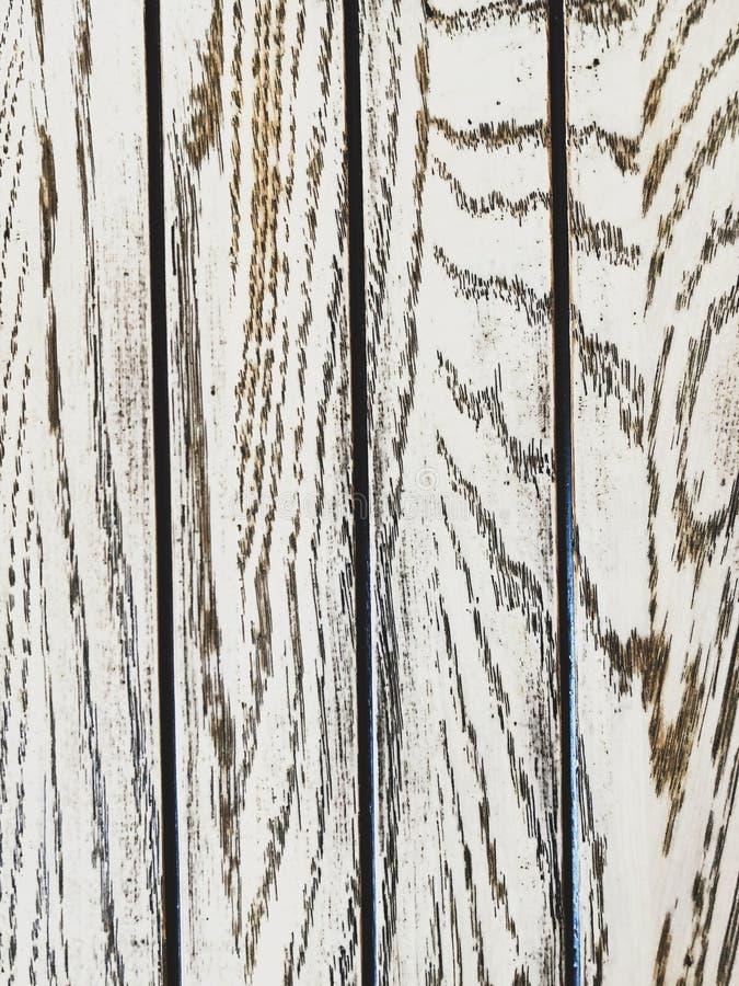 Härliga träbakgrundsgrå färger och vitfärg arkivbild
