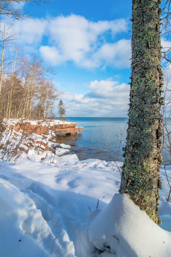 Härliga träd och Lake Superior kustlinje i förkylningen och snö på den stora fjärddelstatsparken - Madeline Island i nordliga Wis royaltyfri foto