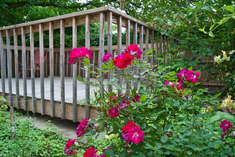 härliga trädgårds- ro royaltyfri bild