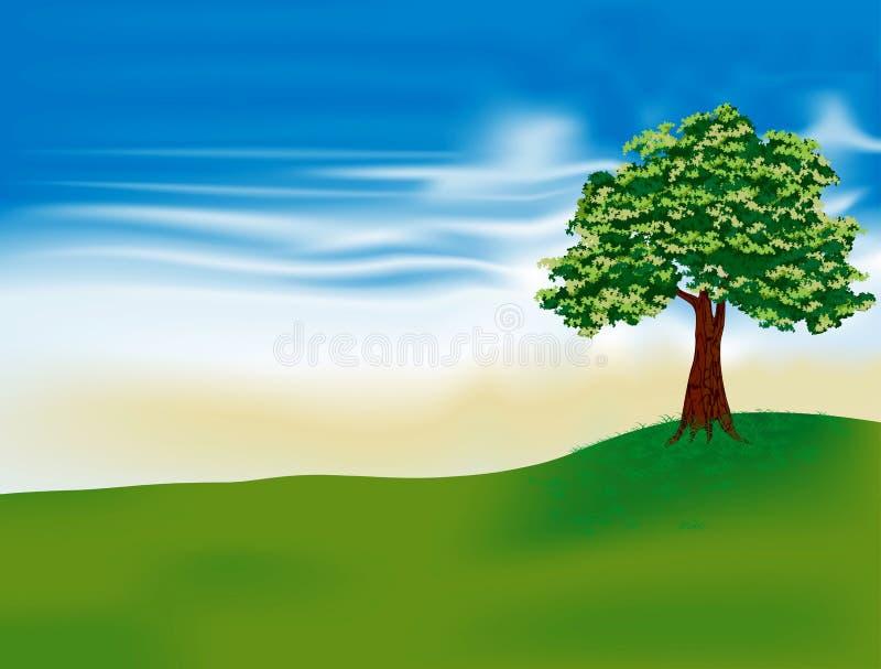 härliga treesikter stock illustrationer