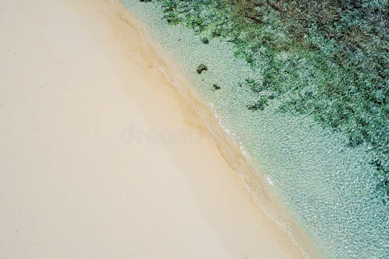Härliga tropiska vita tömmer stranden, och havet vinkar sett från över Flyg- sikt för Seychellerna strand royaltyfri bild