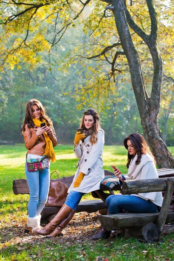 Härliga unga kvinnor som använder mobiltelefoner royaltyfria bilder