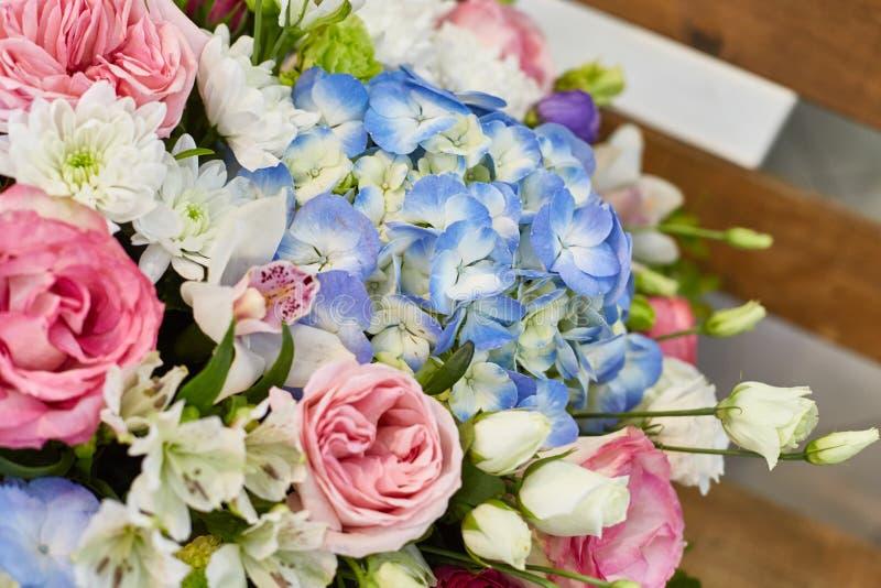 Härliga vårblommor i mjuka rosa färger och ljus - blåttfärger royaltyfri fotografi